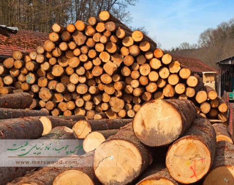 چوب شناسی ترمو چوب