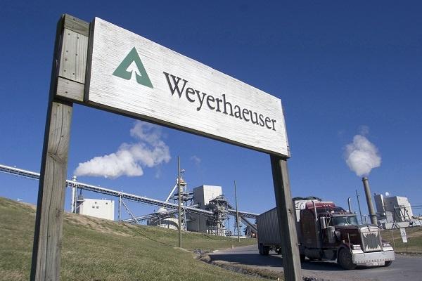 شرکت وایرهاوزر «Weyerhaeuser»