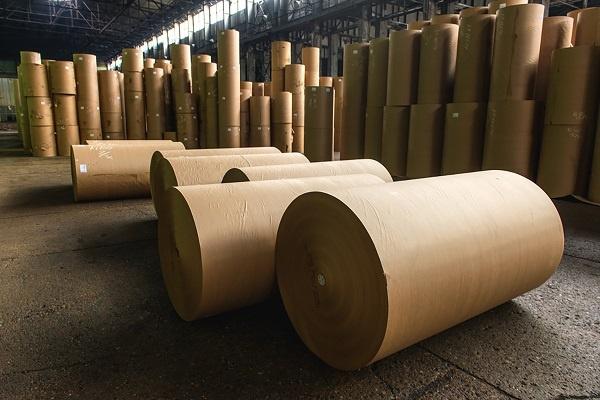 کاربرد چوب در صنعت کاغذ سازی