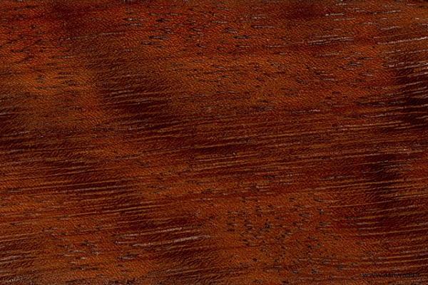 کاربرد چوب در کشتی سازی